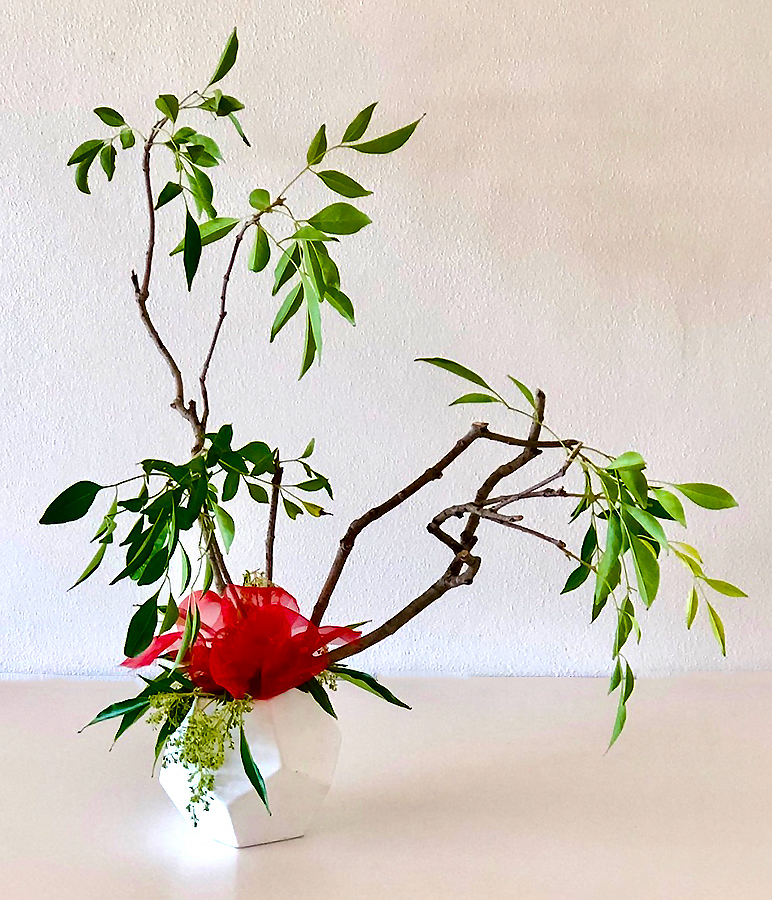 Jeanette - Eliminating excess leaves to show the line of the branch it is emphasised with the red chiffon fabric as the focal point. The fabric almost looks like a flower - great idea to use if flowers are in short supply